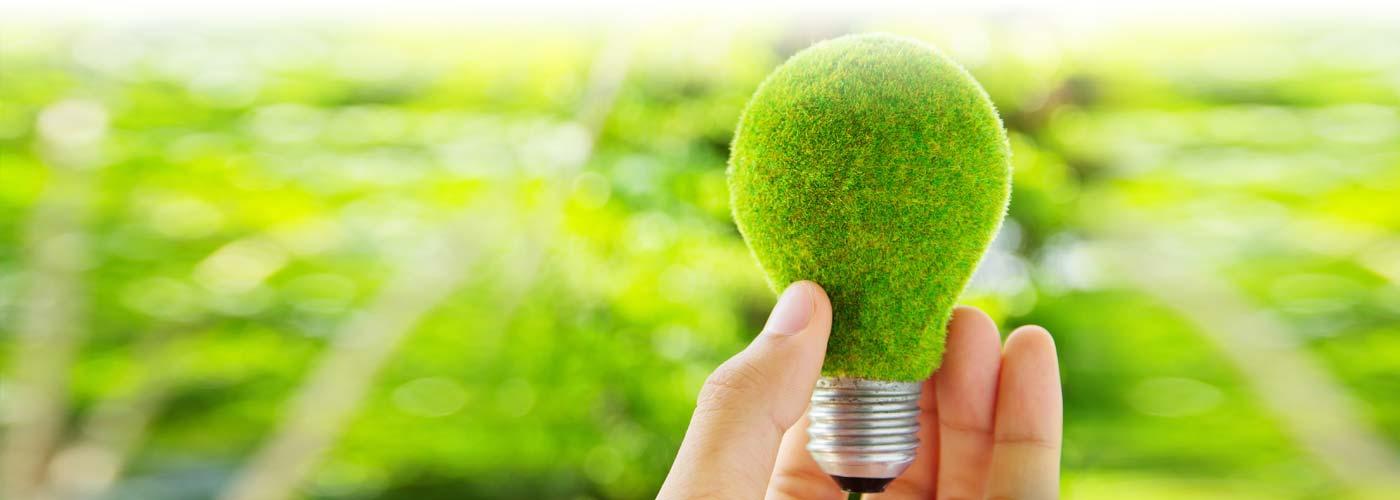 Проект Еко Осветление и Еко Обучение